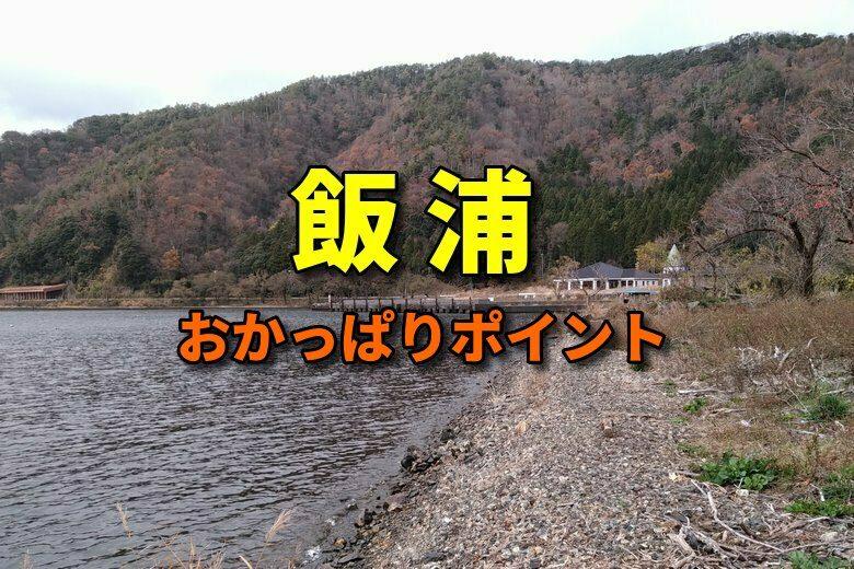 飯浦のバス釣りおかっぱりポイント