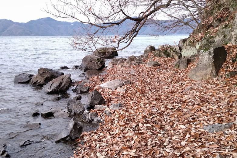 片山の北の岩が多いポイント