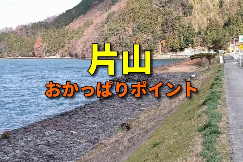 片山のバス釣りおかっぱりポイント