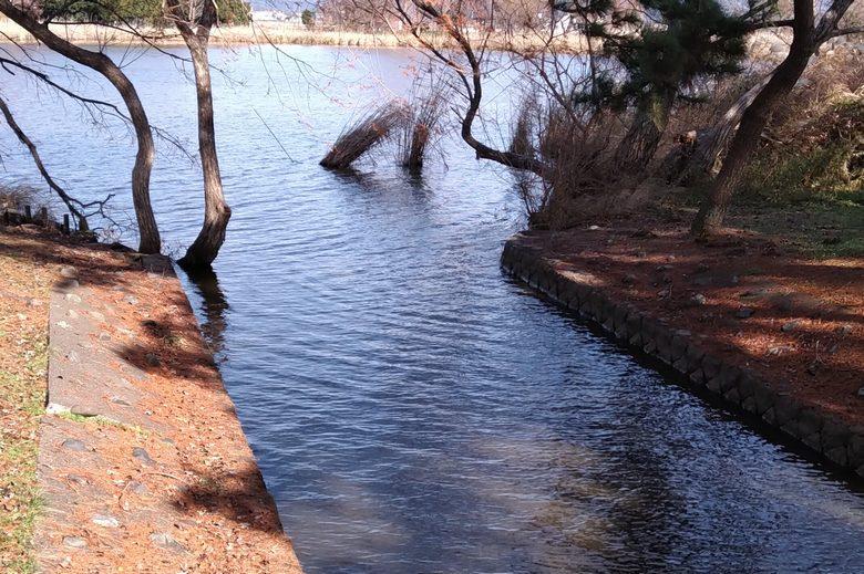 南浦内湖と琵琶湖をつなぐ水路