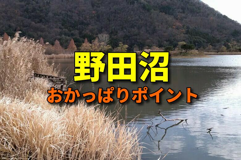 野田沼のバス釣りおかっぱりポイント