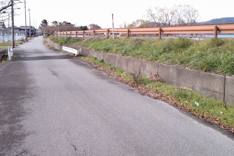 野田沼の駐車場の近くの道路