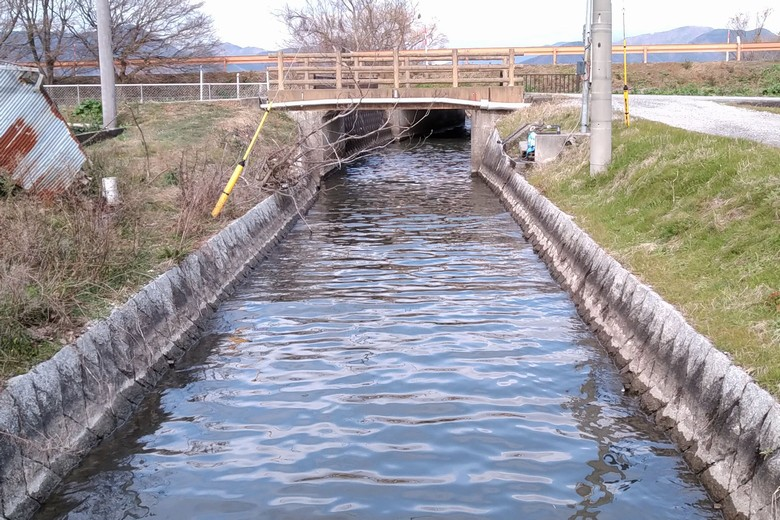 野田沼から琵琶湖へ出ていく水路
