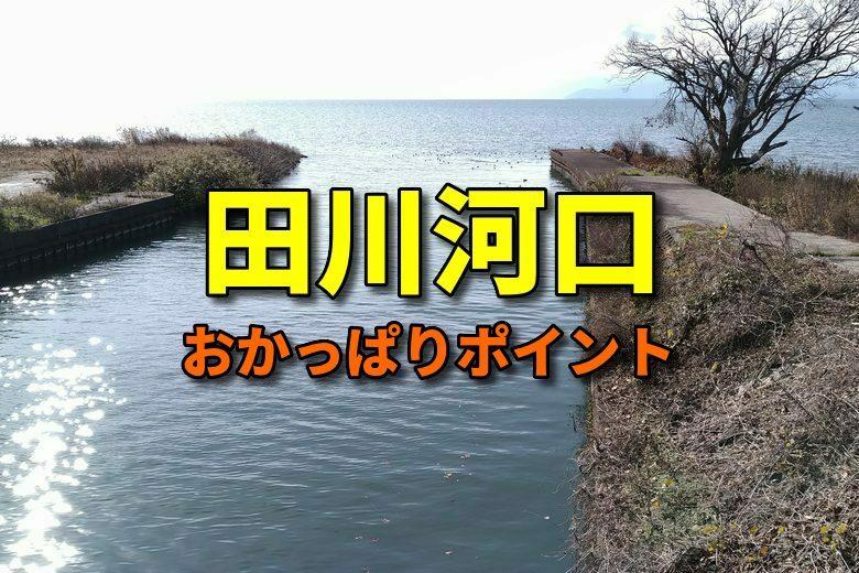 田川河口のバス釣りおかっぱりポイント