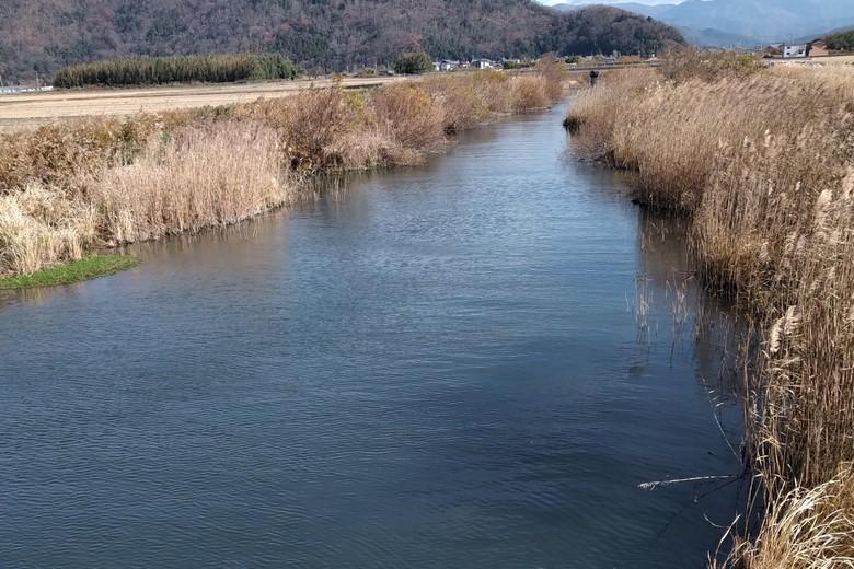 余呉川の上流