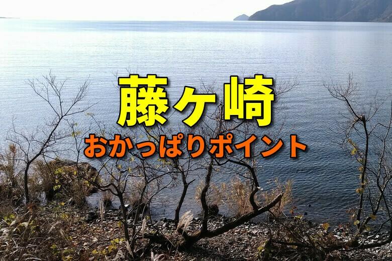 藤ヶ崎のバス釣りおかっぱりポイント
