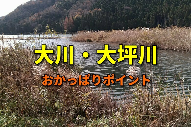 大川と大坪川のバス釣りおかっぱりポイント