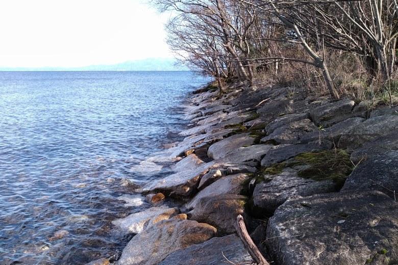 安曇川浜園地の河口近くの石積み護岸