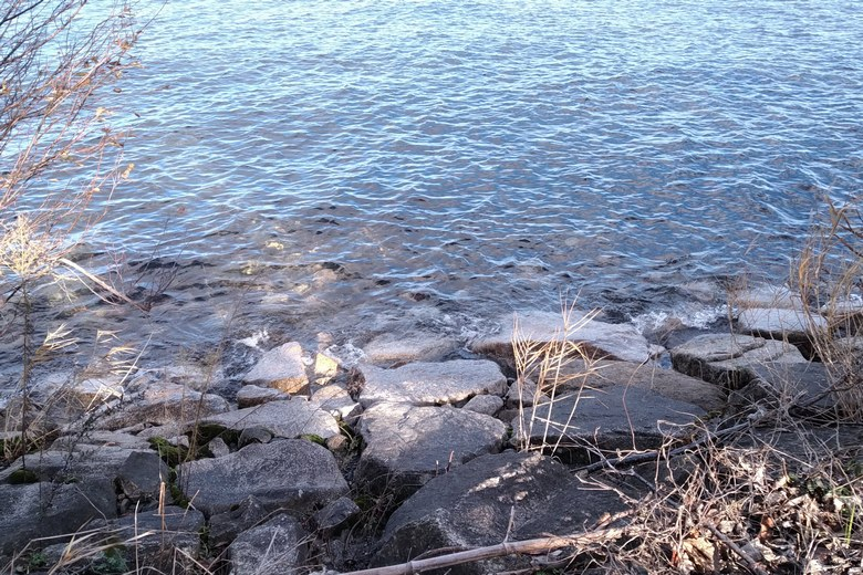 安曇川河口の北岸の石積み護岸