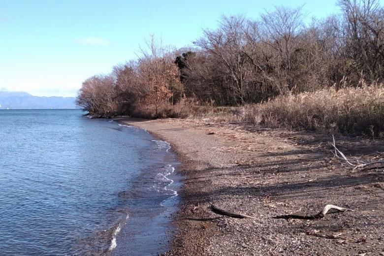 安曇川浜園地の砂利浜と石積み護岸