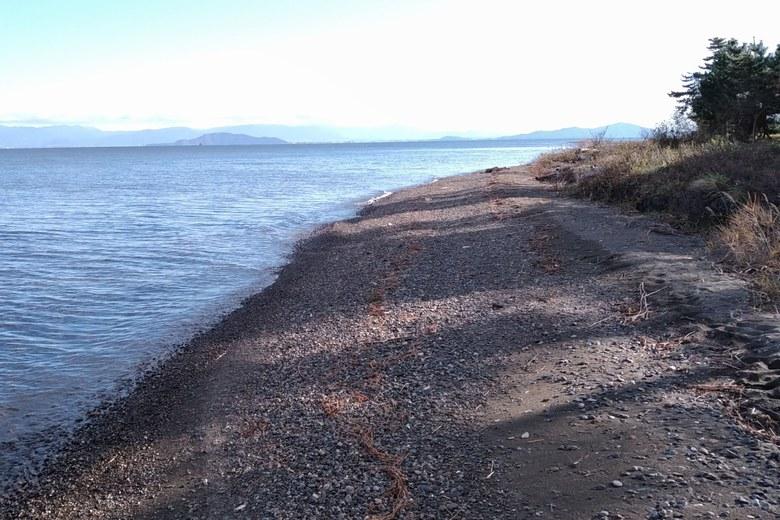 安曇川河口の北岸の岸辺の砂利浜