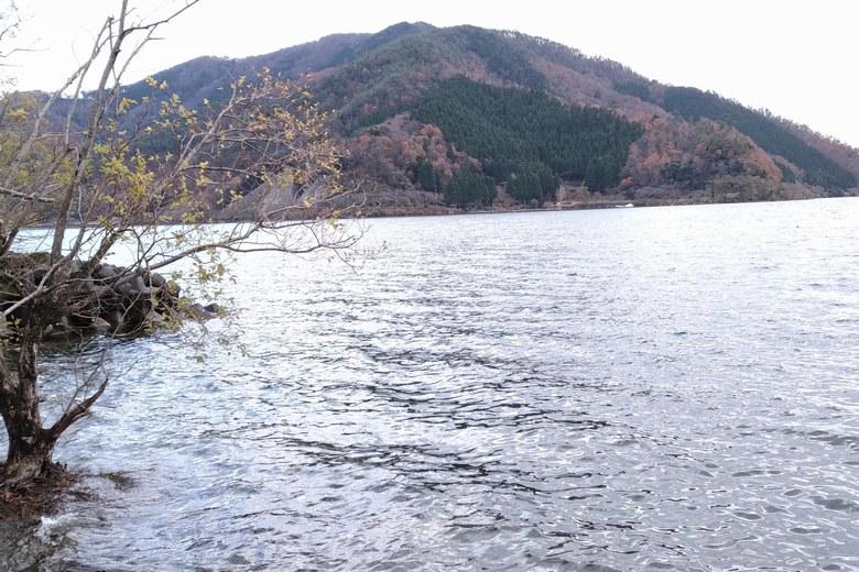 赤崎丸子船パーキングから見た琵琶湖
