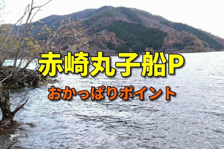 赤崎丸子船パーキングのバス釣りおかっぱりポイント