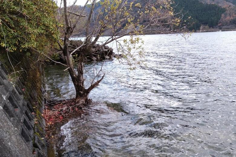赤崎丸子船パーキングの岸辺とテトラブロック