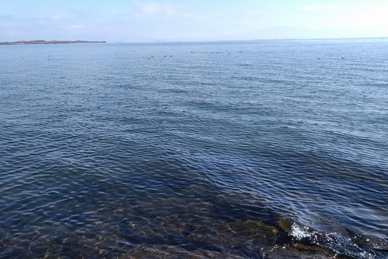 青井川河口から見た琵琶湖