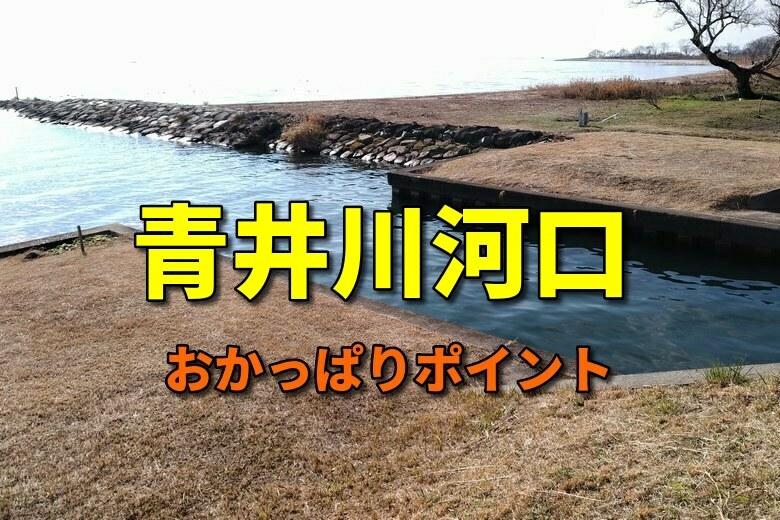青井川河口のバス釣りおかっぱりポイント