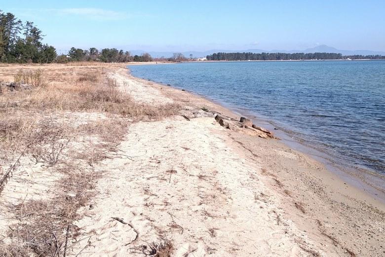 萩の浜の砂浜