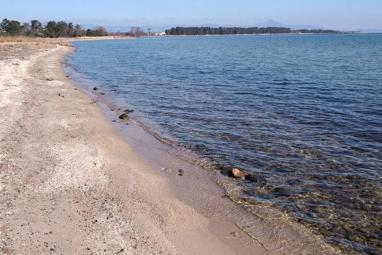 萩の浜の岸辺
