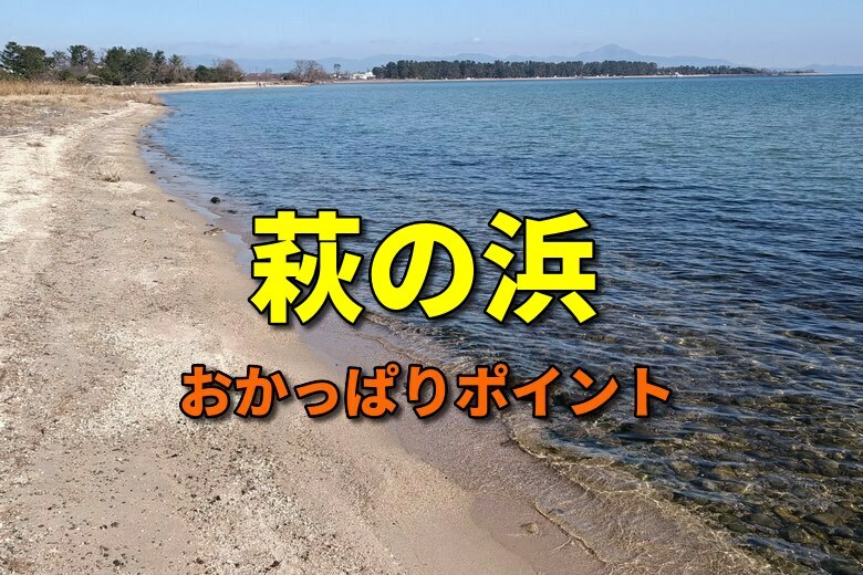 萩の浜のバス釣りおかっぱりポイント