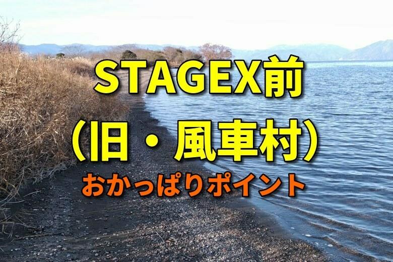 STAGEX前(旧・外ヶ浜風車村)のバス釣りおかっぱりポイント