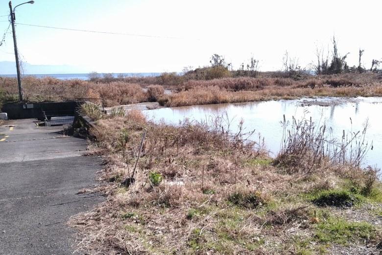 石田川の河口への通路