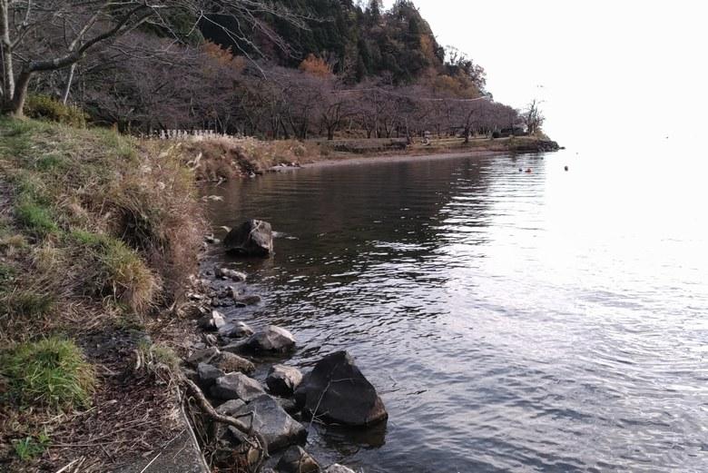 湖岸園地の北の岸辺と岩