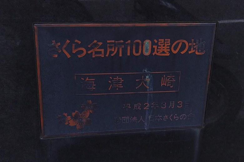 「さくら名所100選の地」に選ばれている海津大崎