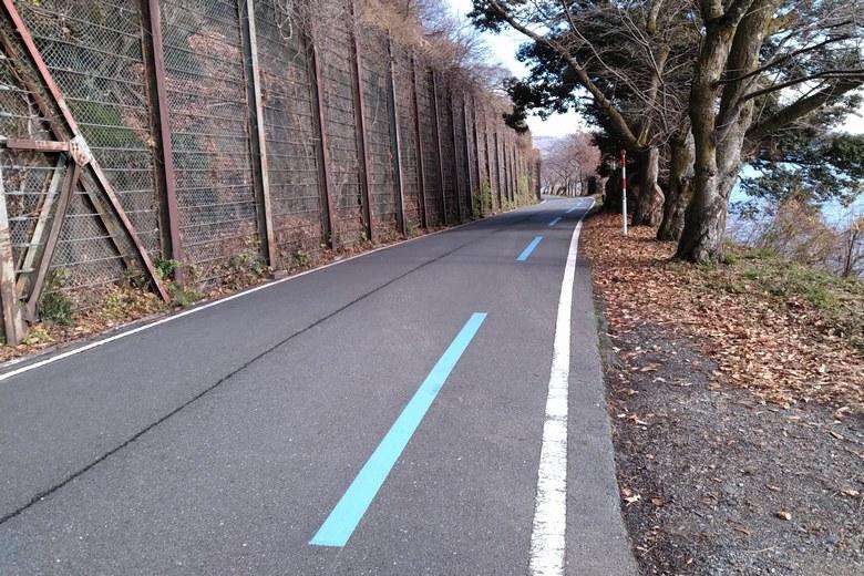 海津大崎を通っている県道557号線