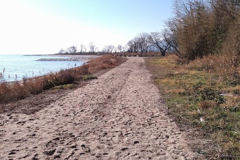 鴨川勝野園地に近い場所の砂浜