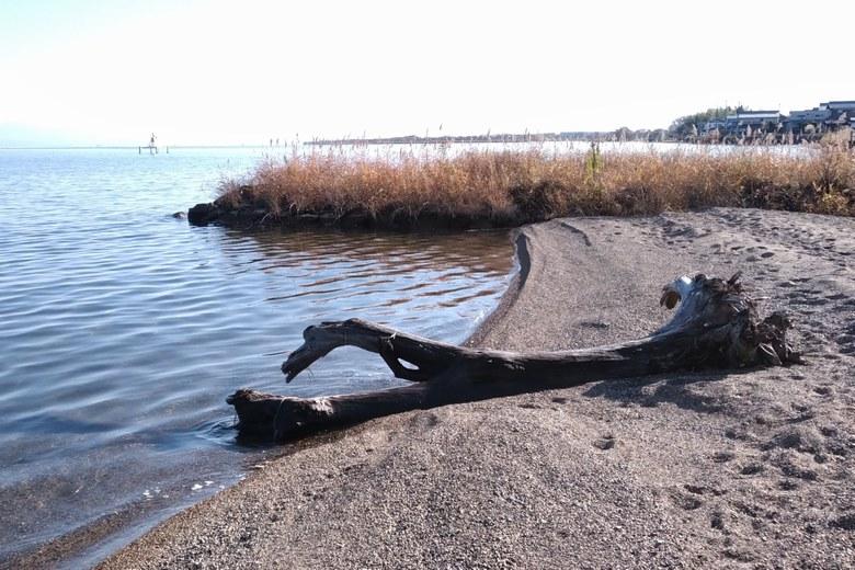 木津浜の南にある水路の流れ込み