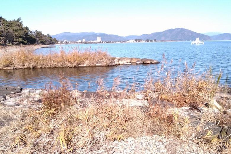 庄界川と水路の流れ込み