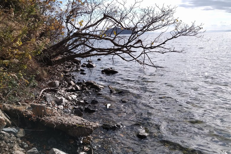 黒土崎の岬先端の岸辺と琵琶湖