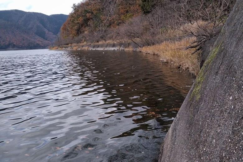 黒土崎の北側ワンドの岸辺の様子