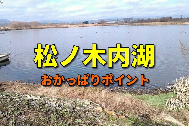 松ノ木内湖のバス釣りおかっぱりポイント