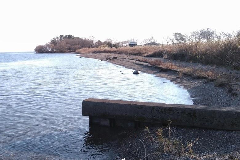 南川河口の南側の岸辺