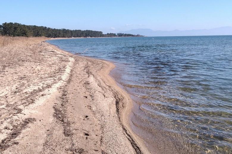 鯰川の北の砂浜