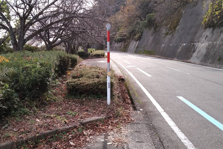 二本松を通る道路の県道557号線