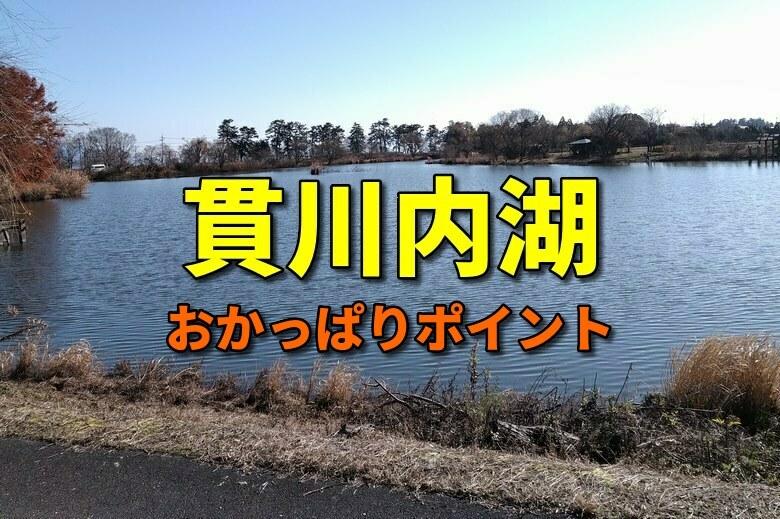 貫川内湖のバス釣りおかっぱりポイント