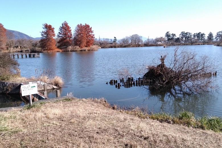 南側の貫川内湖のインレットと杭
