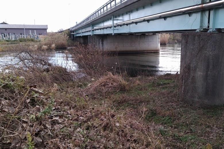 金丸川の橋下のポイント