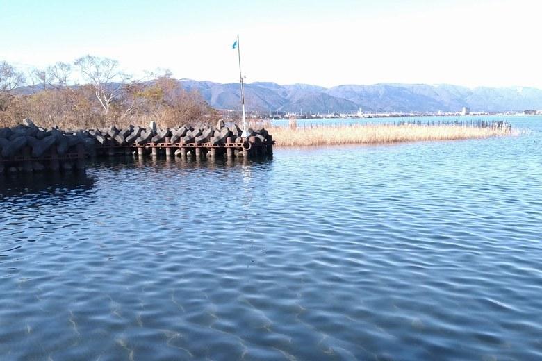 針江浜と隣接している新川船溜まりのテトラブロック