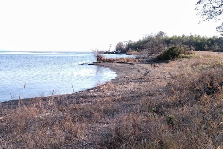 外ヶ浜の南側の岸辺