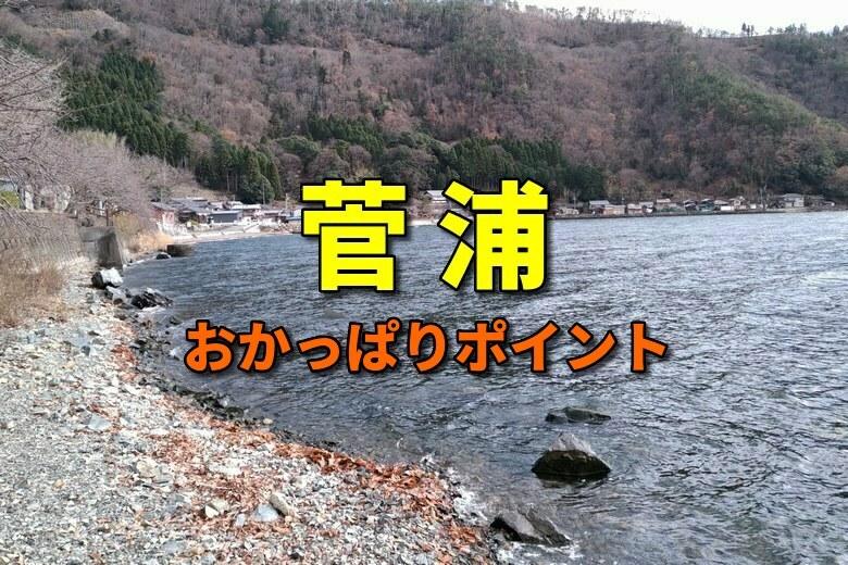 菅浦のバス釣りおかっぱりポイント