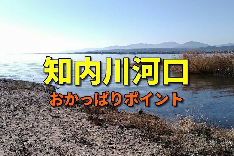 知内川河口のバス釣りおかっぱりポイント