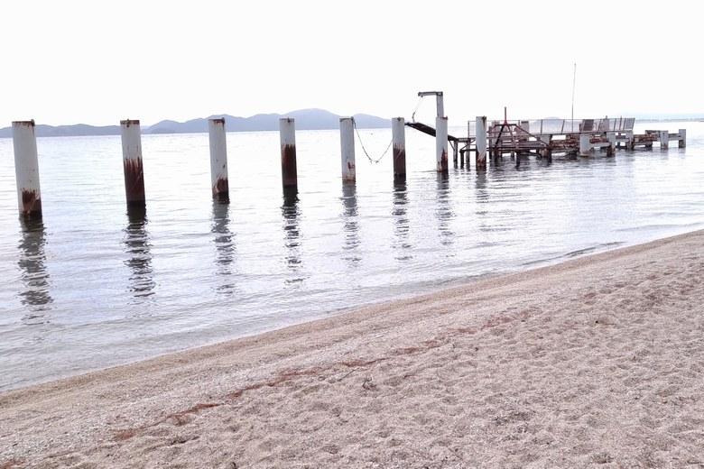 ビアンカ桟橋のポール
