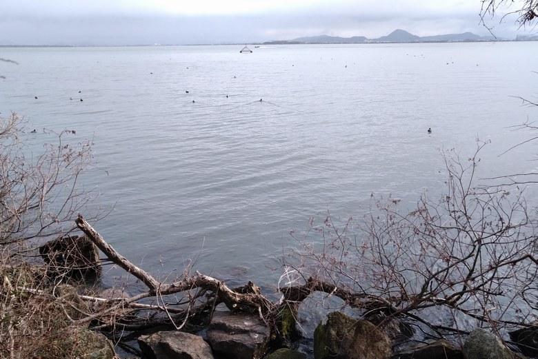 カネカ裏の東岸の沖にある取水塔