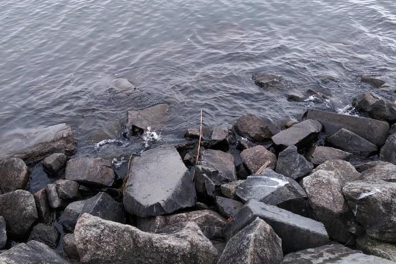 カネカ裏の北岸の石積み護岸