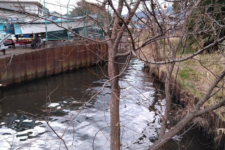 唐崎苑湖岸緑地の南にある流れ込み