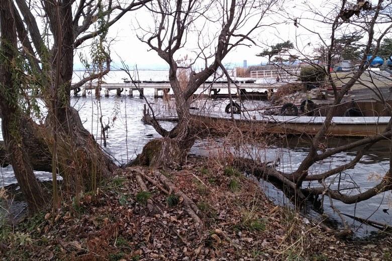 唐崎苑湖岸緑地の南にあるマリーナの桟橋