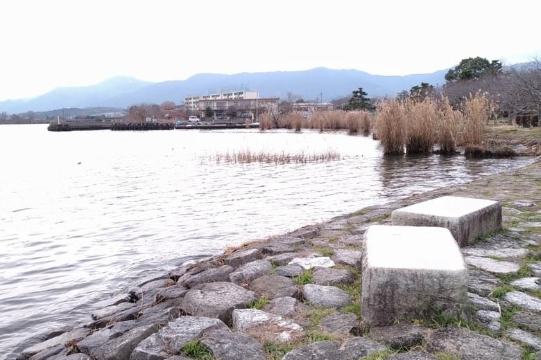 堅田雄琴湖岸公園のアシとなぎさ漁港